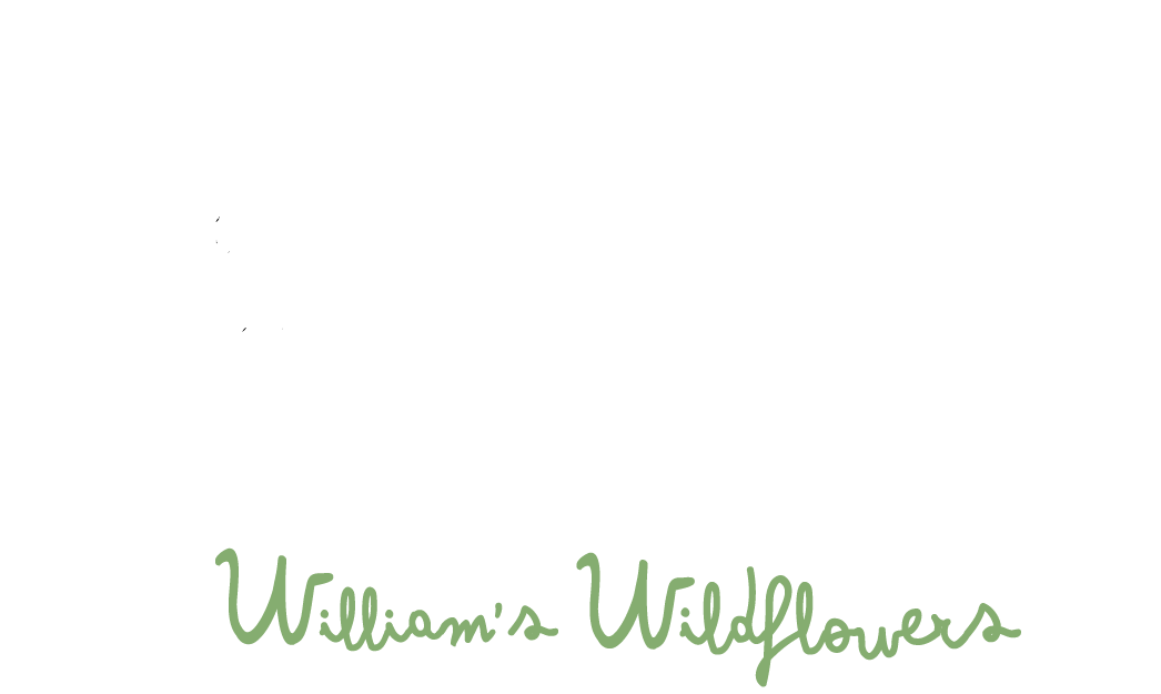 Williams Wildflowers - Weddings and Events Floral Arrangements with Wildflowers and Local Flowers